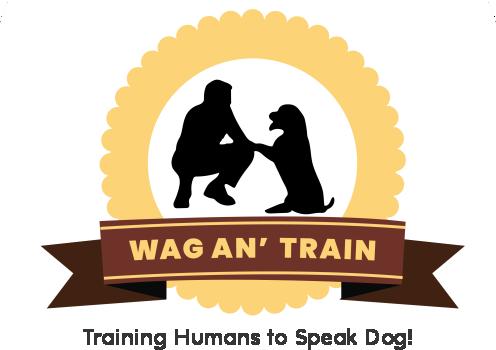 Wag an' Train